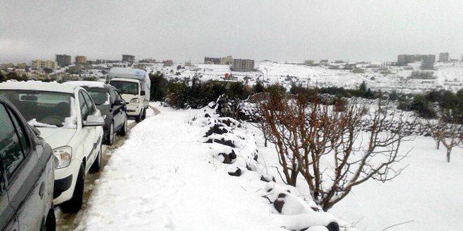 بهبود وضعیت آبی استان السویداء به دلیل بارش های اخیر