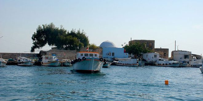 ایجاد مرکز گردشگری در جزیره ارواد