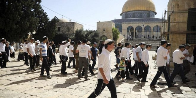یورش مجدد ده ها شهرک نشین صهیونیست به مسجد الاقصی تحت حمایت رژیم اشغالگر