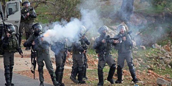 کرانه غربی: جراحت یک نفر فلسطینی به ضرب گلوله اشغالگر