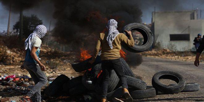جراحت ده ها نفر فلسطینی در سرکوب تظاهرات هفتگی کفر قدوم