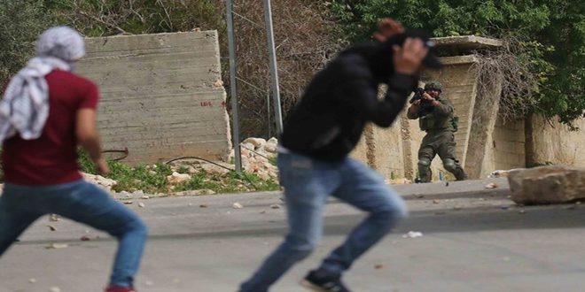 جراحت یک فلسطینی ها در سرکوب تظاهرات هفتگی کفر قدوم توسط اشغالگر