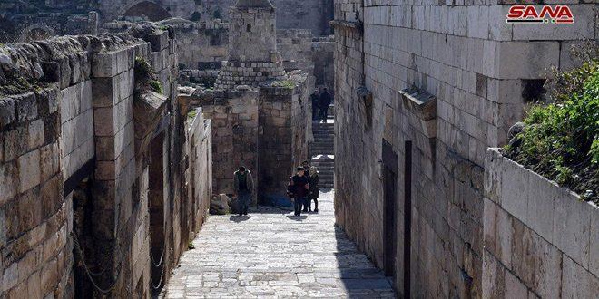 شهر باستانی حلب … موزه ای شامل شگفت انگیزترین سایت های تاریخی است