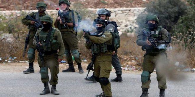 زخمی شدن 3 فلسطینی در جنین به ضرب گلوله نیروهای اشغالگر