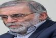وزارت امور خارجه ونزوئلا ترور دانشمند ایرانی محسن فخری زاده را محکوم کرد