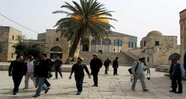 یورش مجدد شهرک نشینان صهیونیست به مسجد الاقصی