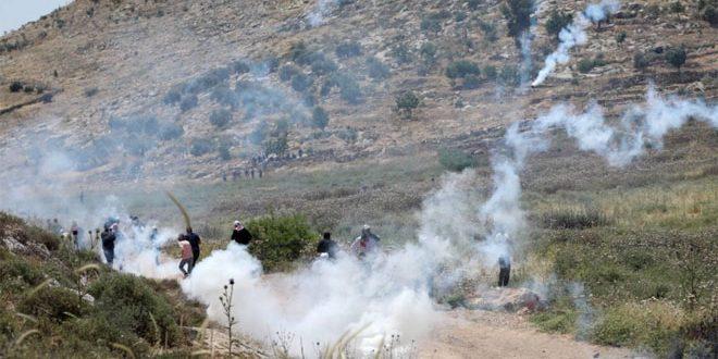 جراحت ده ها فلسطینی در سرکوب تظاهرات کرانه غربی توسط اشغالگر