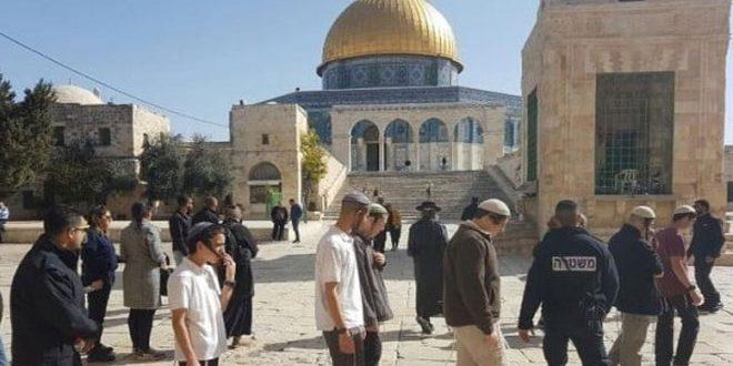 یورش ده های شهرک نشین صهیونیستی به مسجد اقصی