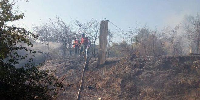 آتشسوزی در اراضی کشاورزی حومه حمص مهار شد