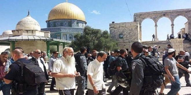 یورش دوباره شهرک نشینان صهیونیست به مسجد الاقصی