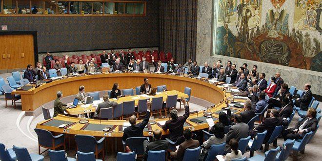Le Conseil de sécurité adopte un projet de résolution sur l'acheminement des aides humanitaires à la Syrie via un seul point frontalier