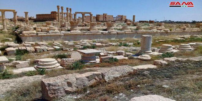 Le temple palmyrénien de Nabû, un vestige révélant le lien entre Palmyre et la Mésopotamie