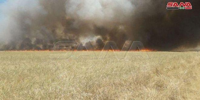 Union tchèque: La provocation des incendies par les forces américaines dans les récoltes agricoles en Syrie constitue un crime de guerre