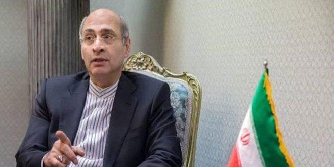 L'Iran affirme son rejet de la nouvelle décision du Conseil exécutif de l'OIAC sur la Syrie
