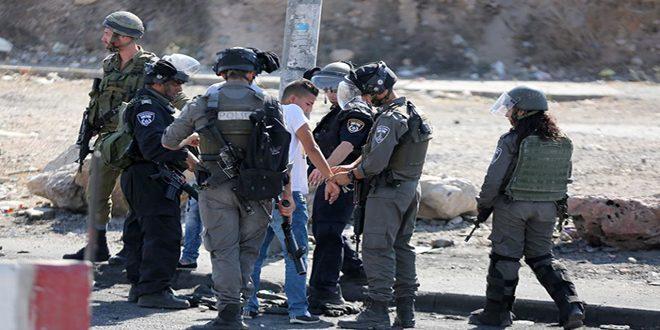 Les forces d'occupation israélienne arrêtent 11 Palestiniens en Cisjordanie