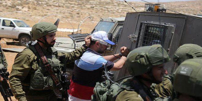 Les forces d'occupation arrêtent 7 Palestiniens en Cisjordanie