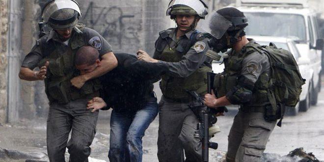 Les forces d'occupation israélienne arrêtent 14 Palestiniens en Cisjordanie