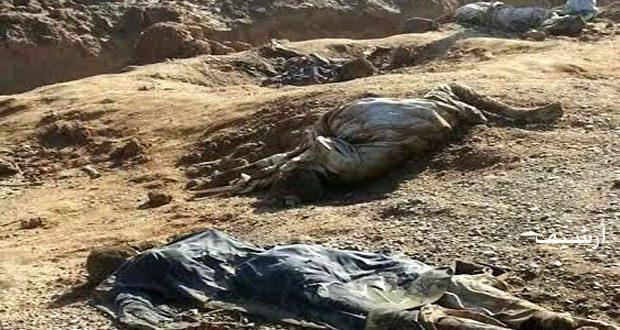 גלוי קבר אחים בעיר דיר א-זור שכולל גופותיהם של כמה חללים שחוסלו על ידי ארגון דאעש הטרוריסטי