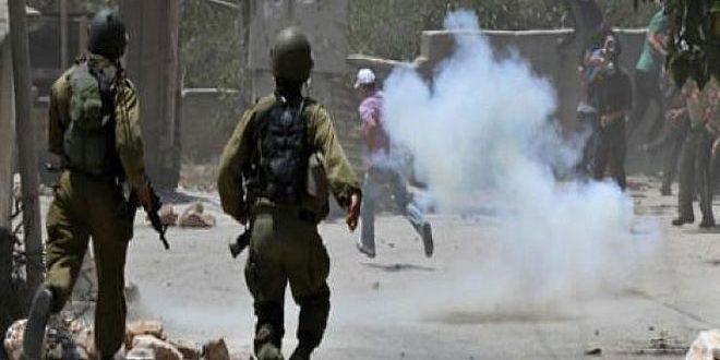 כמה פלסטינים וסטדונתים נפגעו כתוצאה מתוקפנות שכוחות הכיבוש ביצעו בצפון אלח'ליל