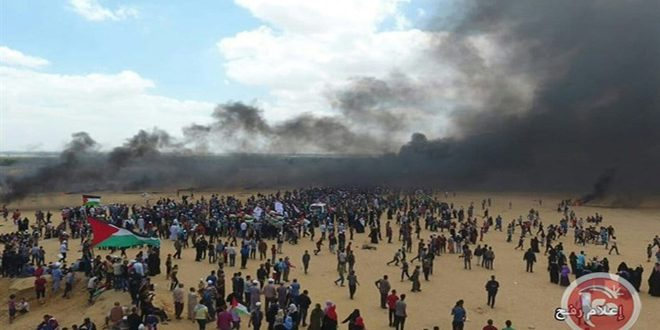 """הפלסטינים מתכוננים לפעילות שבוע """"ההתלכדות והרחמים"""""""
