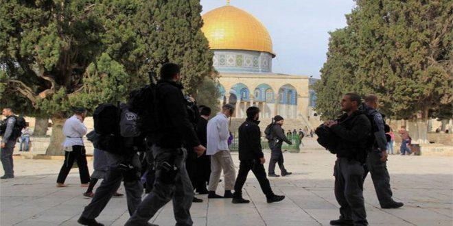 הכוחות הישראליים פרצו למסגד אל אקצה המבורך