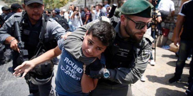 מרכז האסירים למחקרים : 220 ילדים אסירים בבתי –הכלא של הכיבוש נמנעו להצטרף בשנת הלימודים החדשה