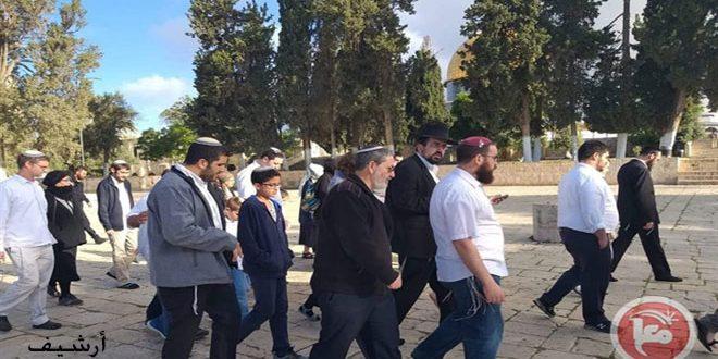 עשרות מתנחלים ישראליים מחדשים פריצתם למסגד אלקסא באבטחת כוחות הכיבוש