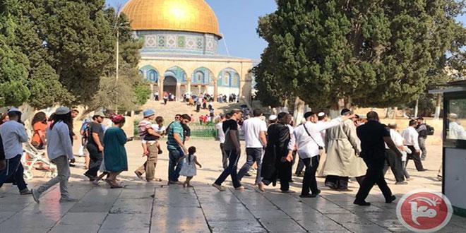 מתנחלים ישראליים חידשו פשיטתם על מסגד אלאקצה
