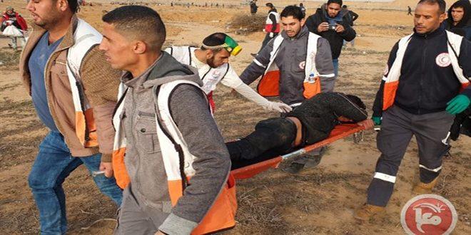 כמה פלסטינים נפצעו בעיר חברון