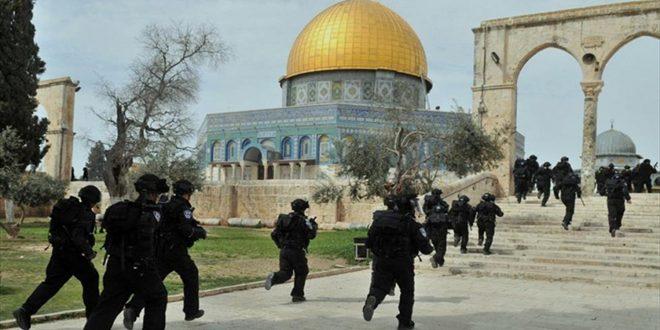 מתנחלים מחדשים את פריצתם למסגד אלאקצה בשמירתם של כוחות הכיבוש