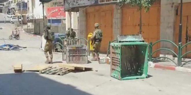 מספר פלסטינים נפגעו בהתקפתם על ידי כוחות הכיבוש בחברון