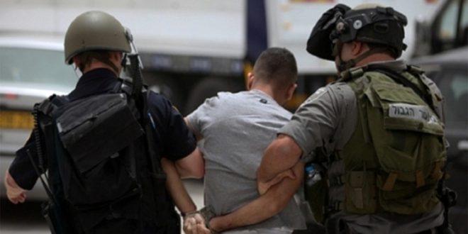 כוחות הכיבוש עצרו ילד פלסטיני ליד המסגד האיבראהימי בחברון