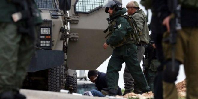 כוחות הכיבוש עוצרים 3 פלסטינים בשכם