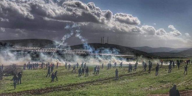 פציעת עשרות פלסטינים כתוצאה לדיכוי צעדה דוחה תוכניות הסיפוח בטובאס על ידי כוחות הכיבוש