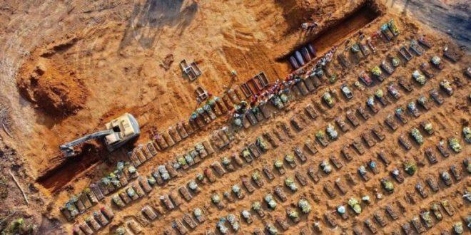 ברזיל: 52 אלף בני אדם אובחנו בקורונה ביממה האחרונה