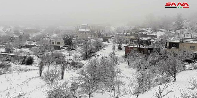 שלגים סלנפה בפריפריה של לטקייה