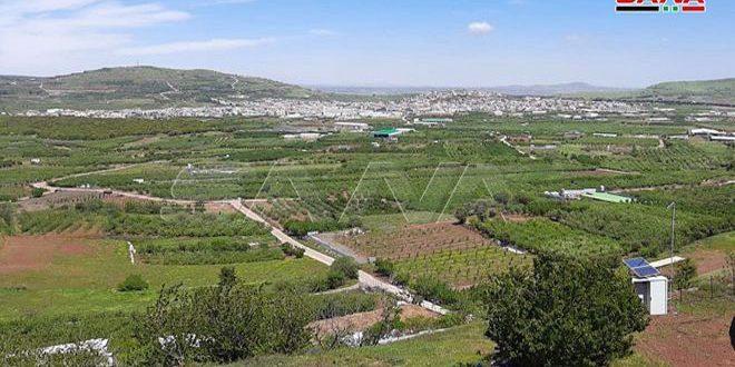 הכוחות הישראליים חטפו רועה צון ביער קודנה בפרפר קוניטרה