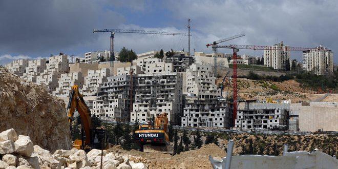 שלטונות הכיבוש מכריזים על תוכנית להקמת 534 יחידות דיור חדשות דרומית לשכם