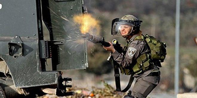 פציעת תושב פלסטיני בג'ינין