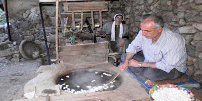 На протяжении многих десятилетий провинция Хама славится производством натурального шелка