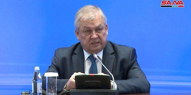 Лаврентьев: Ситуация, складывающаяся в Идлебе, вызывает у России особое беспокойство