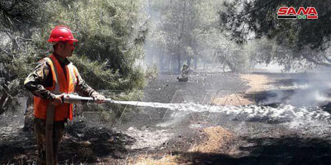 Вблизи трассы Хомс — Тадмор потушен крупный пожар