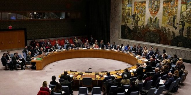 СБ ООН принял проект резолюции о гумпомощи Сирии сроком на один год