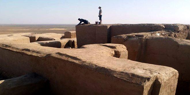 Департамент древностей и музеев провинции Хасаке начал реставрацию археологического объекта Тель-Байдар