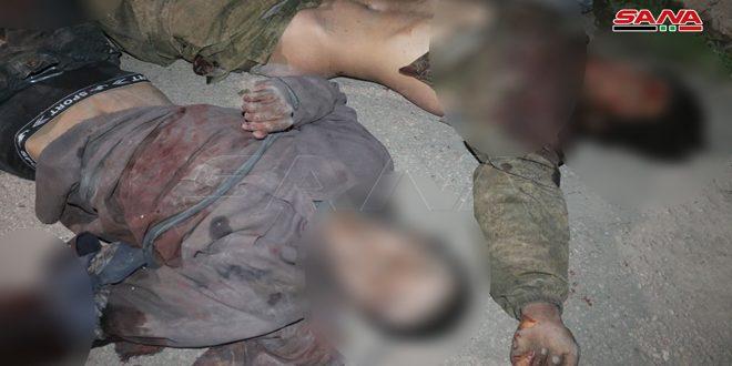Военные Сирии ликвидировали банду террористов в провинции Дейр-эз-Зор
