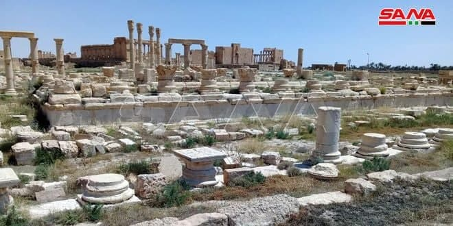 Российско-сирийская миссия по реабилитации древних археологических памятников в Сирии