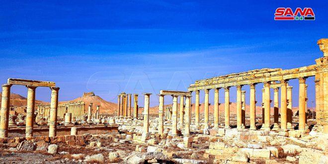 Профессия туристических гидов в Сирии постепенно возрождается