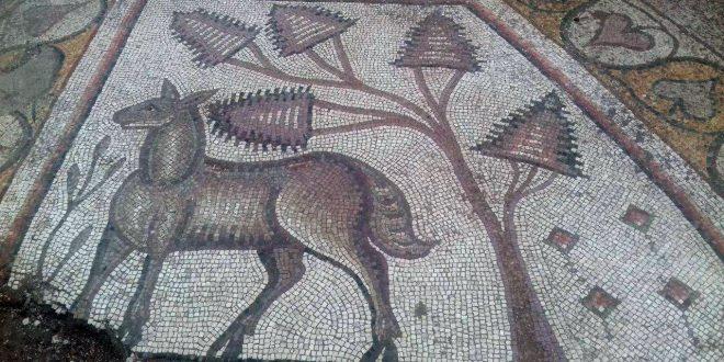 İkinci En Büyük Mozaik Levhası Bulundu