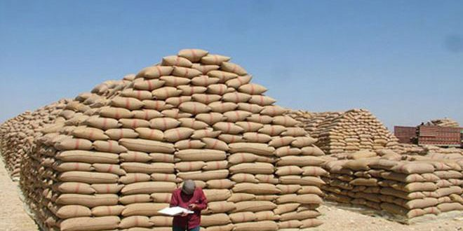 Haseke Çiftçilerine 1 Miyar 588 Milyon Havale Gönderildi