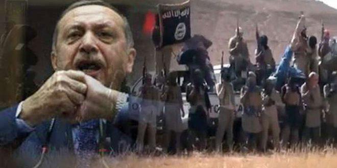 Erdoğan Rejimi ile IŞİD Arasındaki Koordinasyonu Deşifre Etti